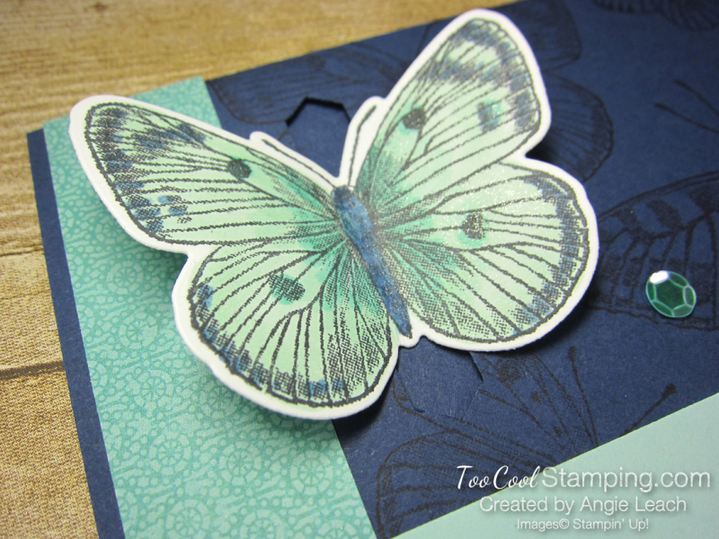 Butterfly Brilliance Emerging Butterfly Cards - navy 3