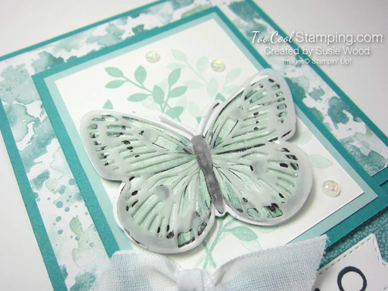 Butterfly brilliance hello jade - wood 2