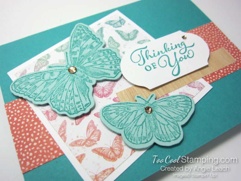6 butterfly brilliance thinking of you - leach 2