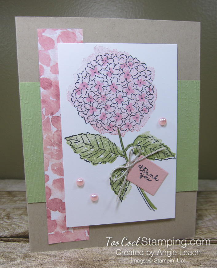 Hydrangea Haven with thank you tag