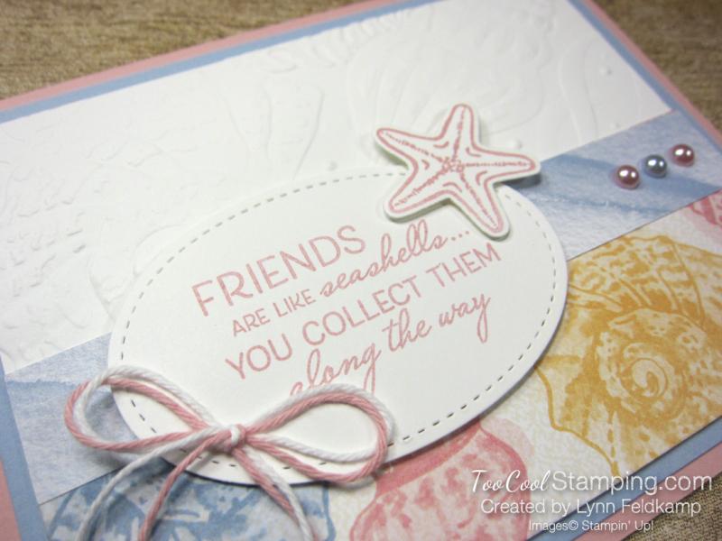 Friends like seashells - feldkamp 2