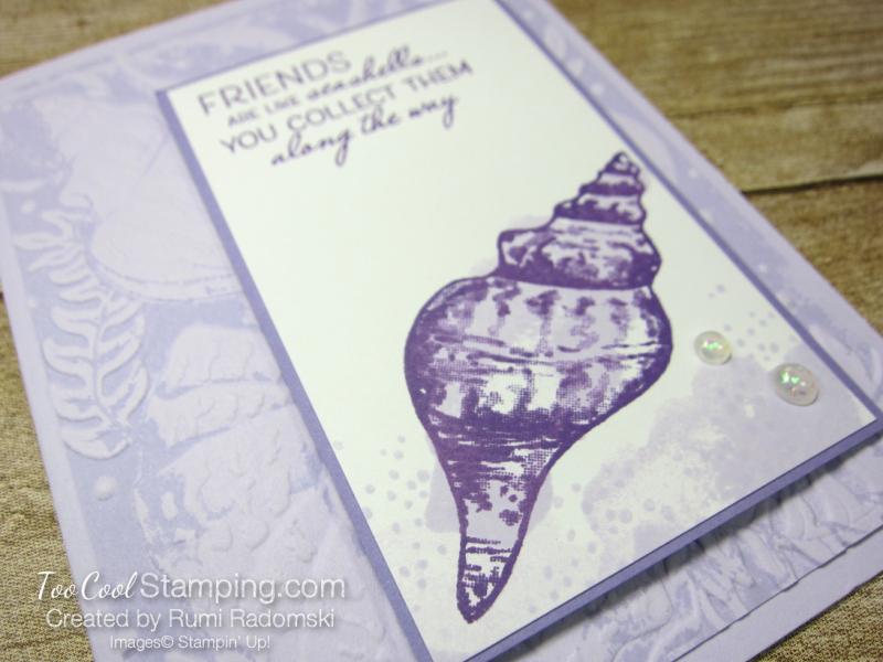 Seashellls inked background 2