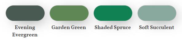 Evening evergreen comparison