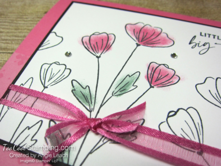 Polished pink 3