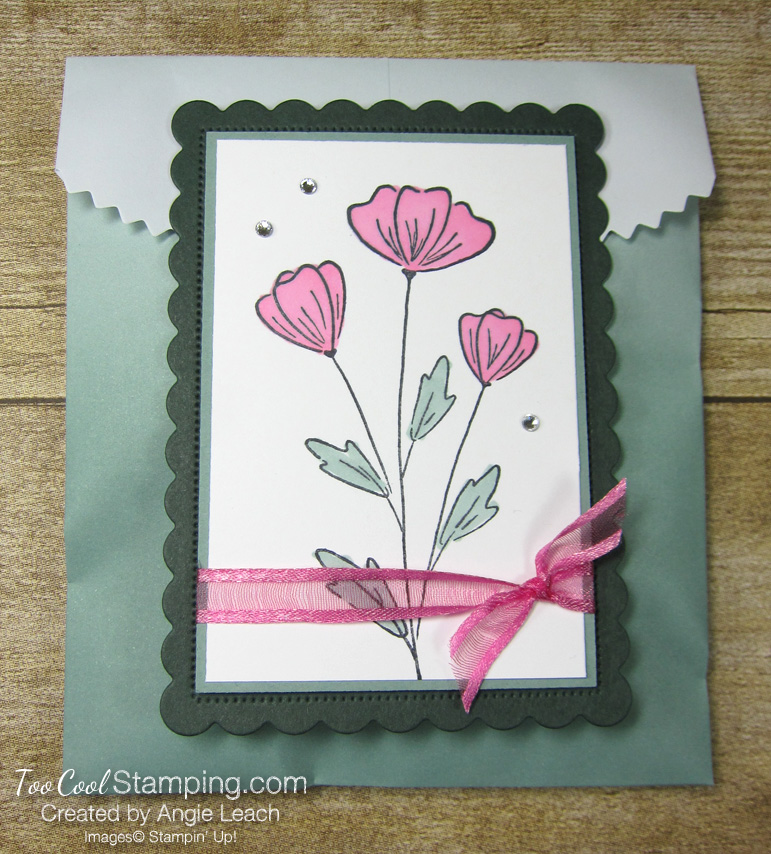 Flowers of friendship ombre gift bag - succulent