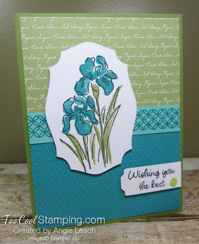 Inspiring Iris Wishing You The Best - bermuda