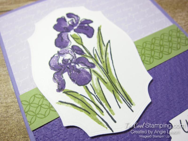 Inspiring Iris Wishing You The Best - grape 2