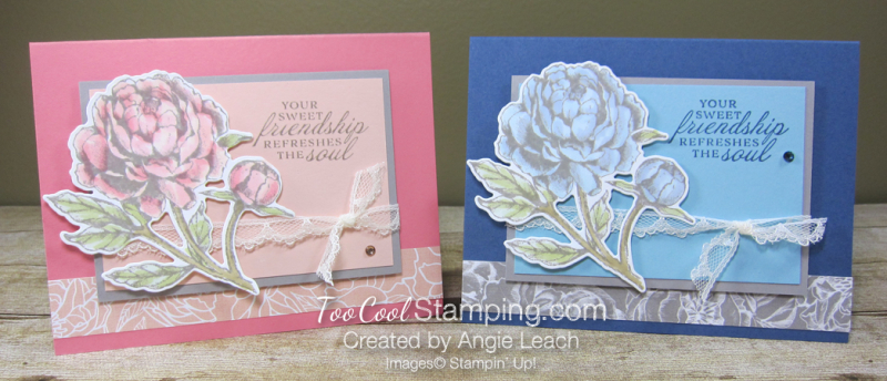 Prized Peony Friendship Refreshes - two cool