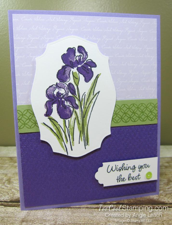 Inspiring Iris Wishing You The Best - grape