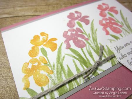 Inspiring Iris somebody - rose 2