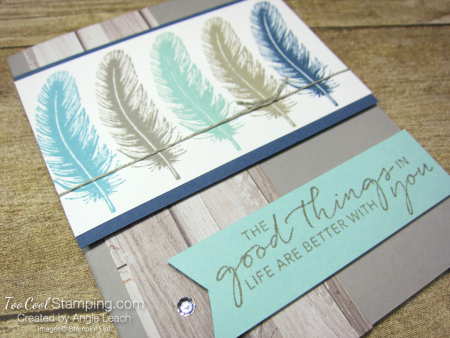 Tasteful touches repeated stamping - feather 2