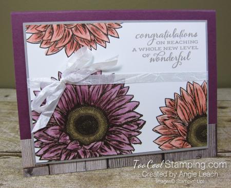 Celebrate Sunflowers New Level of Wonderful - razzleberry 1