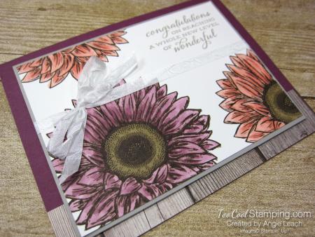 Celebrate Sunflowers New Level of Wonderful - razzleberry 2