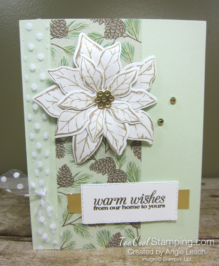 Poinsettia Petals Warm Wishes cards - seafoam pine