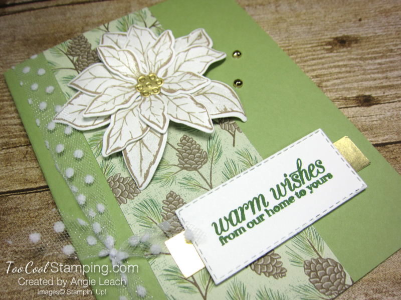 Poinsettia Petals Warm Wishes cards - pear pine 2
