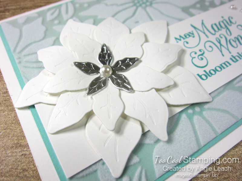 Pretty Poinsettia Plush Overlay cards - coastal 3