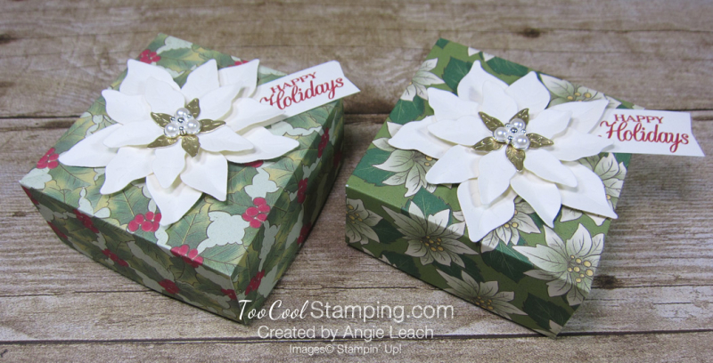 Poinsettia place boxes - two cool