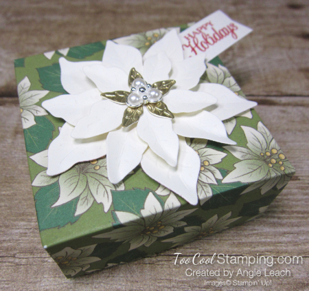 Poinsettia place box - garden