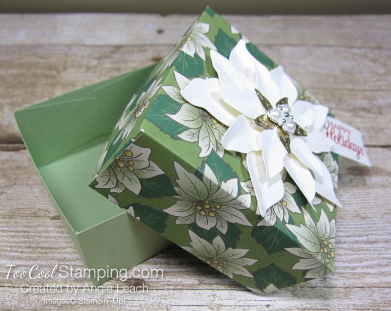 Poinsettia place box - garden 3