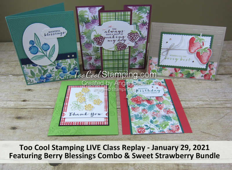 Berry Blessings LIVE Class Kit Banner