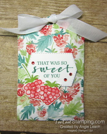 Delightful tag topper pouch - spruce