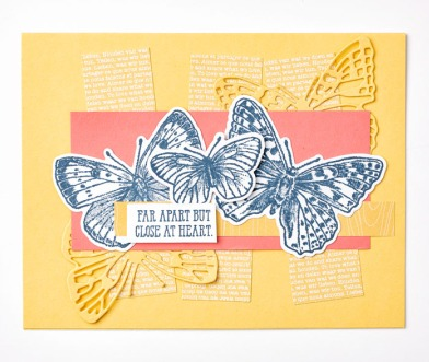 Butterfly Brilliance-Bundle_Individual-Sample_1