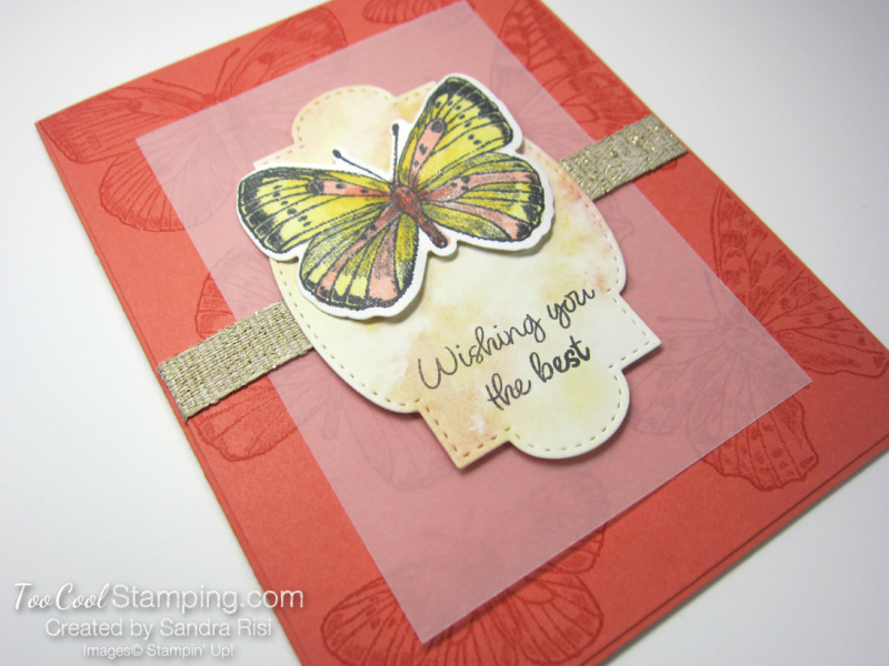 20 butterfly brilliance wishing you the best - risi 2