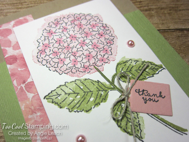 Hydrangea Haven with thank you tag 3