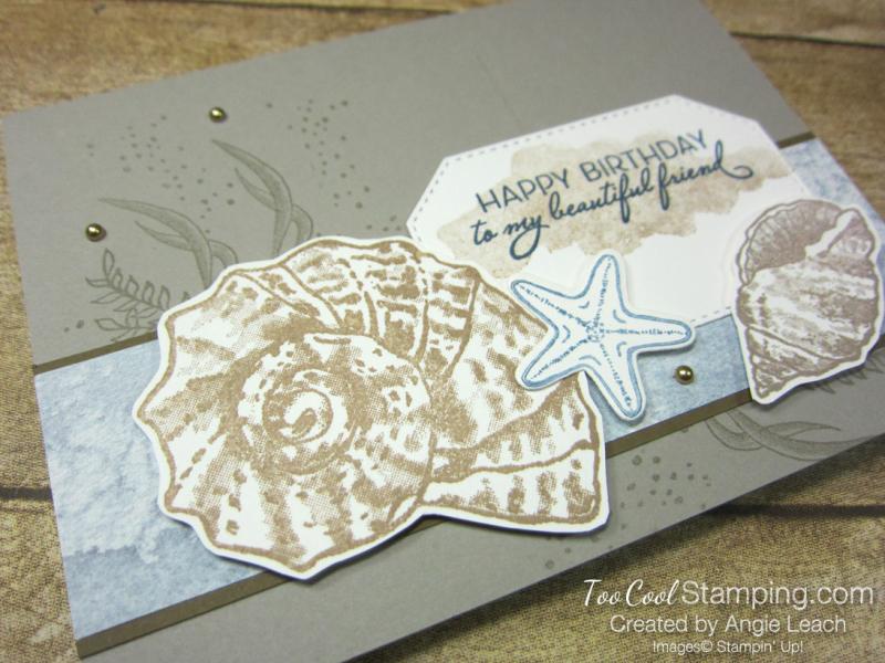 Seaside seashells happy birthday - granite 2