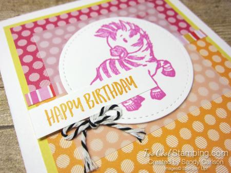 Zany zebras birthday - carlson 2