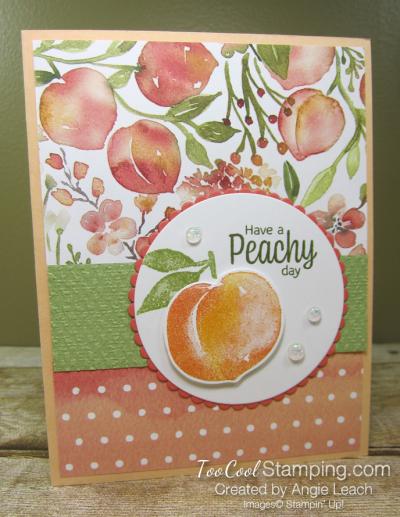 You're a Peach Scallop Circle - papaya 1