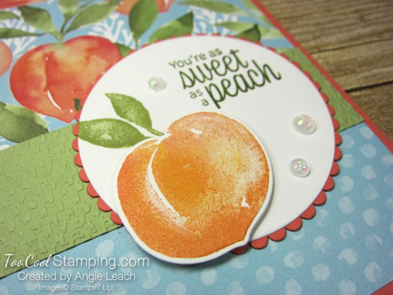 You're a Peach Scallop Circle - coral 2