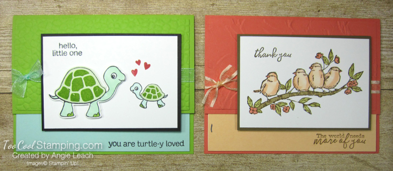 Turtle friends and free as a bird - two cool