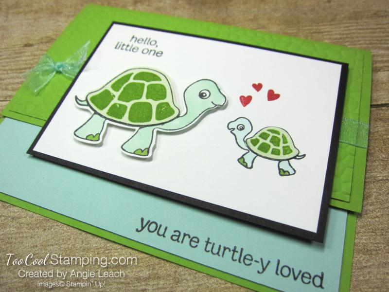Turtle friends hello little one 2