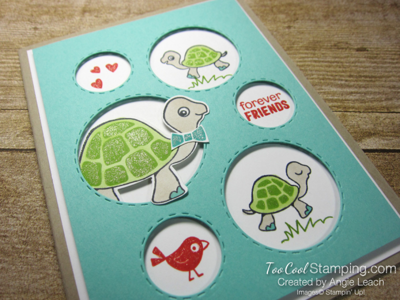 Turtle friends forever friends 2
