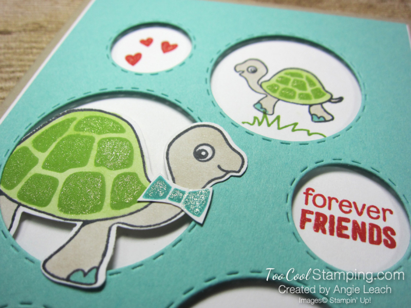 Turtle friends forever friends 3