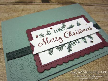 Evergreen elegance merry Christmas - succulent 2