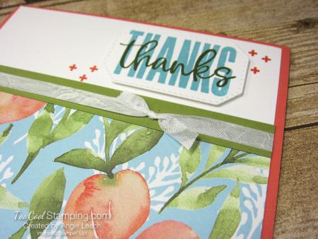 Biggest Wish Peach Thanks - coral 2