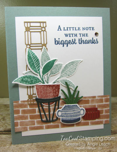 Bloom where planted lattice - biggest thanks