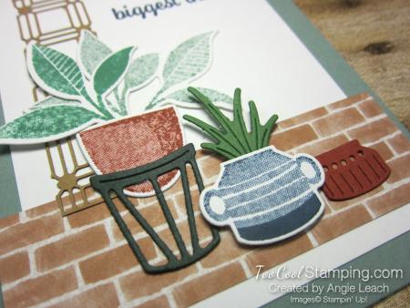 Bloom where planted lattice - biggest thanks 2
