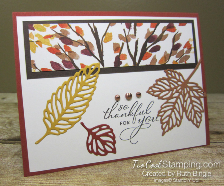 Gorgeous leaves - bingle 1