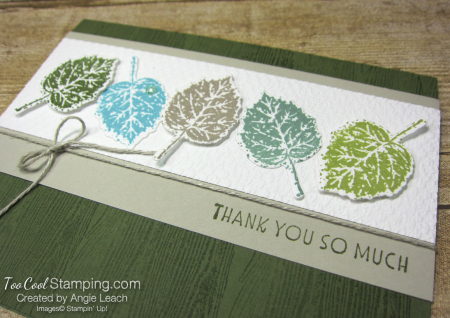 Gorgeous leaves line up - mossy 2