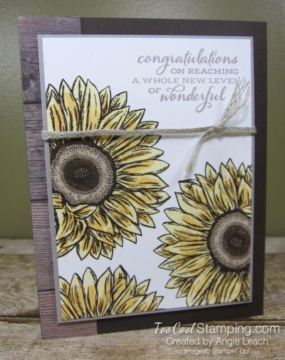 Celebrate Sunflowers New Level of Wonderful - yellow