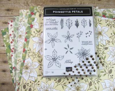 Poinsettia Petals Class Kit Contents 2
