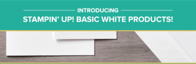 Basic-White-Products-Banner-768x251