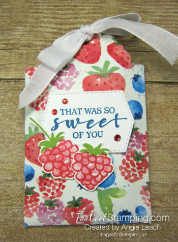 Delightful tag topper pouch - pacific