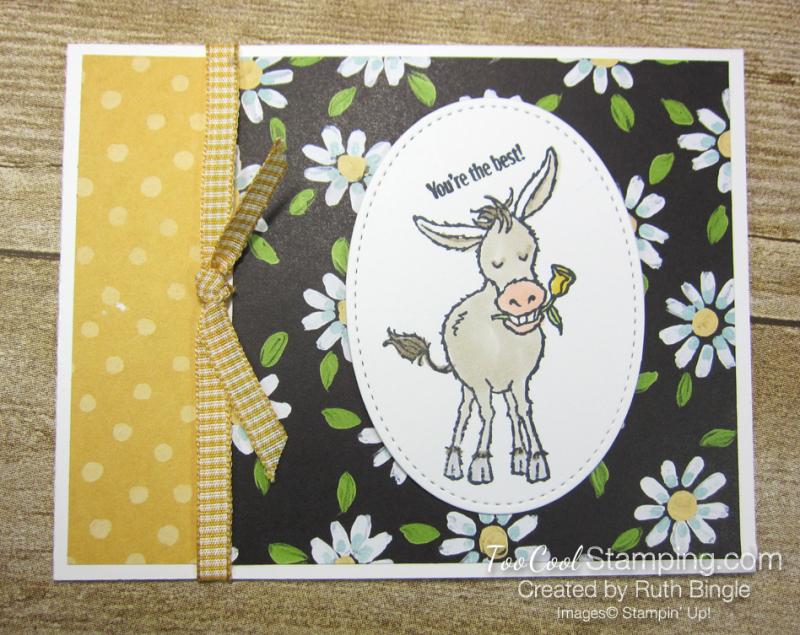 Darling donkey - bingle 1