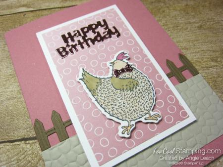Happy birthday chick fence - rococo 2