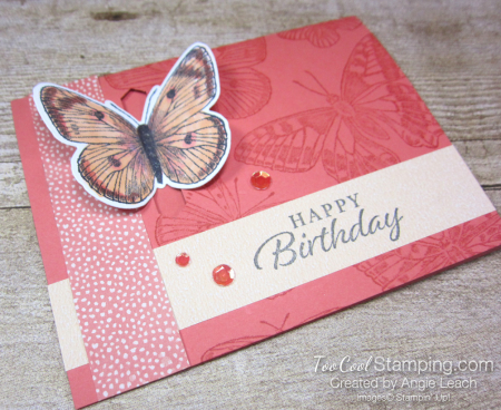 Butterfly Brilliance Emerging Butterfly Cards - coral 5