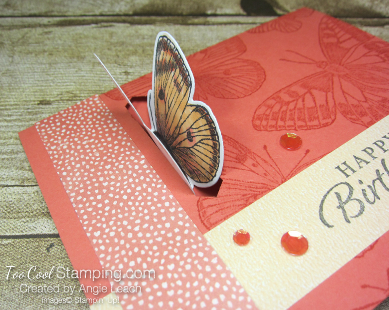 Butterfly Brilliance Emerging Butterfly Cards - coral 3
